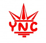 Young Nigga$ Chasing