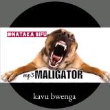 kavu bwenga