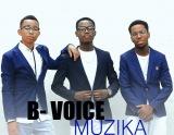 B-voice muzika