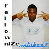 Fellownize