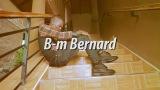 B-m Bernard