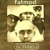 Fatmod