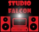Studio Falcon