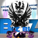Wayne Pro