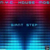 N.Y.C. House Mob