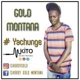Gold Montana