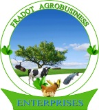 FRADOT AGROBUSINESS ENTERPRISESS