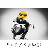 FLEXGAWD (flex gang)