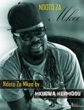 Mkubwa Hermidou