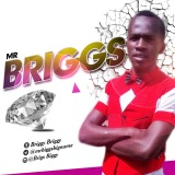 Mr Briggs