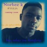 Norbee k