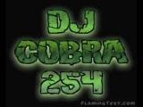 dj cobra 254