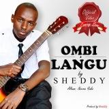 Sheddy
