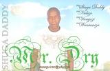 Mr. Dry