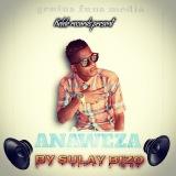 Sulay bizo