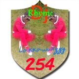 Dj Rhyme 254