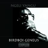 Birdboi Geneus