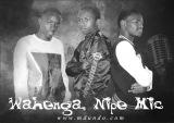 wahenga