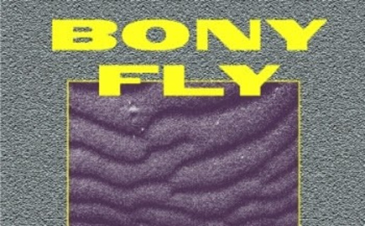 busy signal comfort zone free download