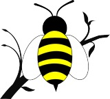 Qwyn Bee