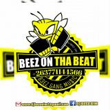 DJ BEEZ ZIM