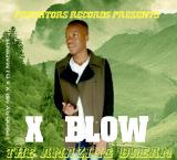 X~Blow