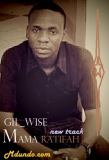 GIL_WISE