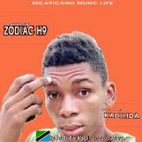 ZODIAC H9