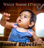 Wizzy Sound Effects