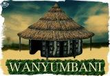 Wanyumbani