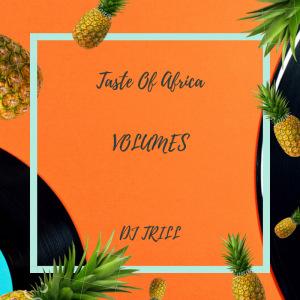 Taste Of Africa-DJ TRILL