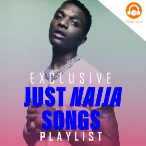 Just Naija Songs 2021 Download MP3